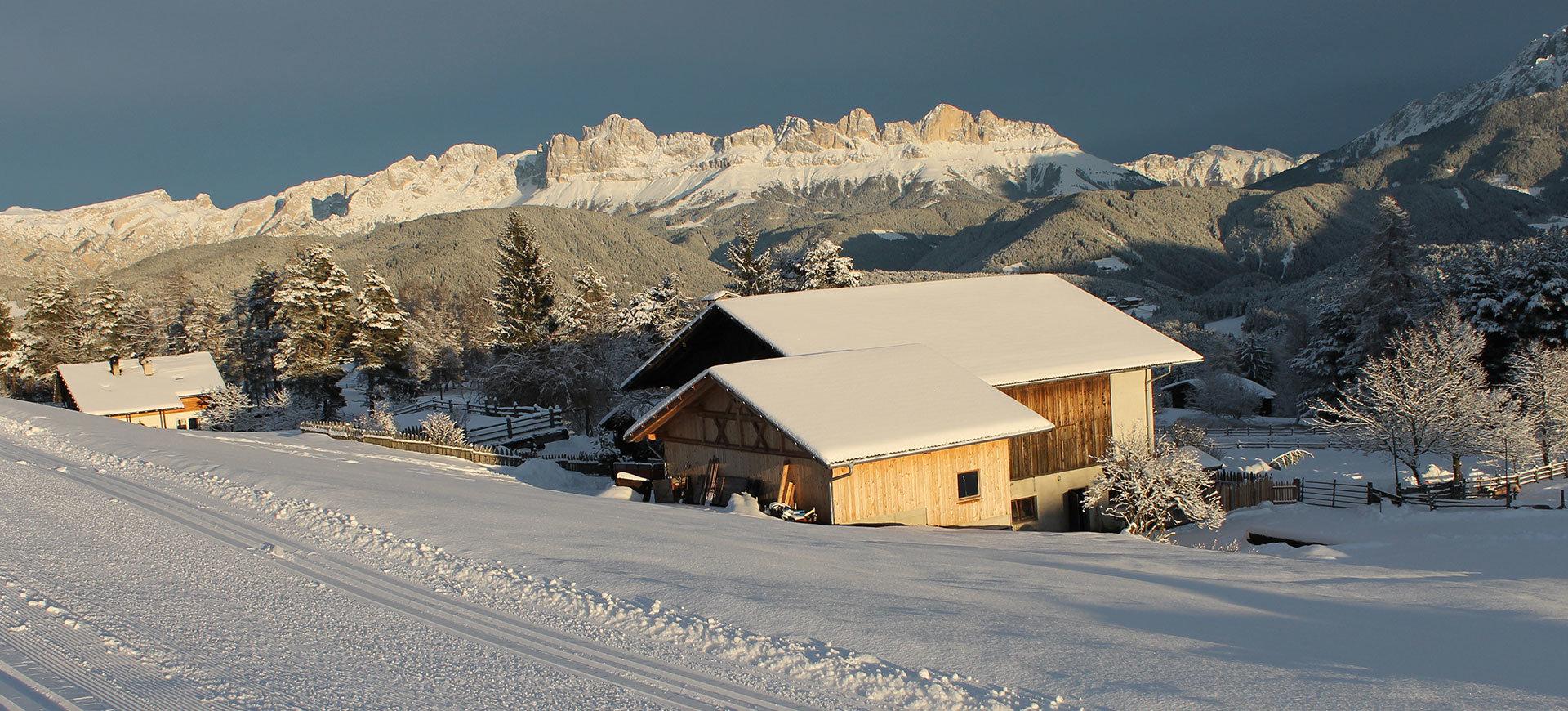 Agriturismo Dolomiti Nova Ponente :: Stauderhof Agriturismo